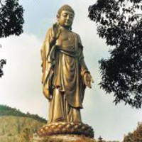 crbst_bouddha_compassion0