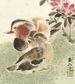 canard mandarin en peinture